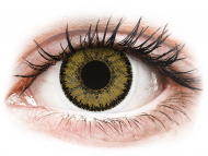 Lenti a contatto nocciola - correttive - SofLens Natural Colors Dark Hazel - correttive (2 lenti)